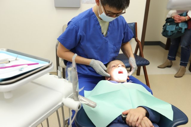 Expert Dental Care Information From Our General and Cosmetic Dentists